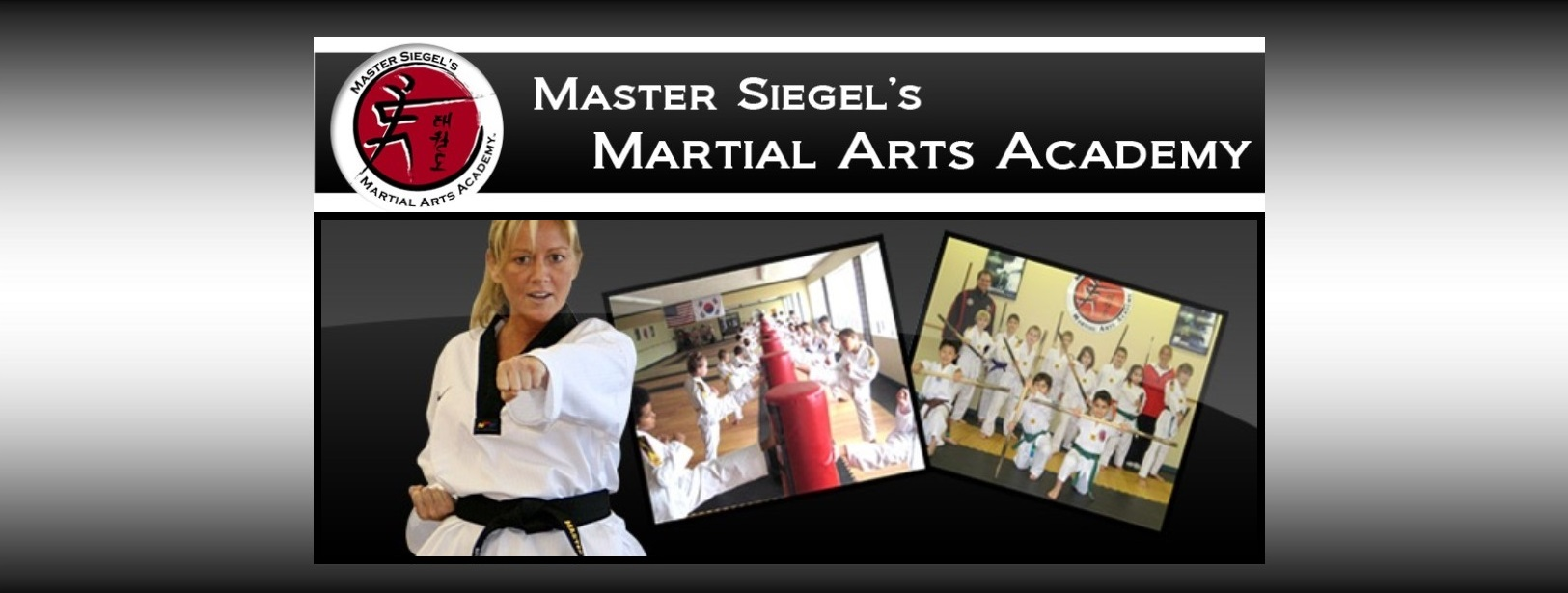 Welcome to Master Siegel's Martial Arts Academy