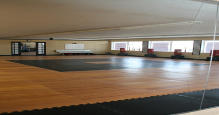 training floor- Master Siegel Martial Arts Academy - Kalamazoo MI