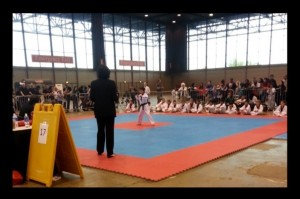 Martial Arts Nationals 2013  -11
